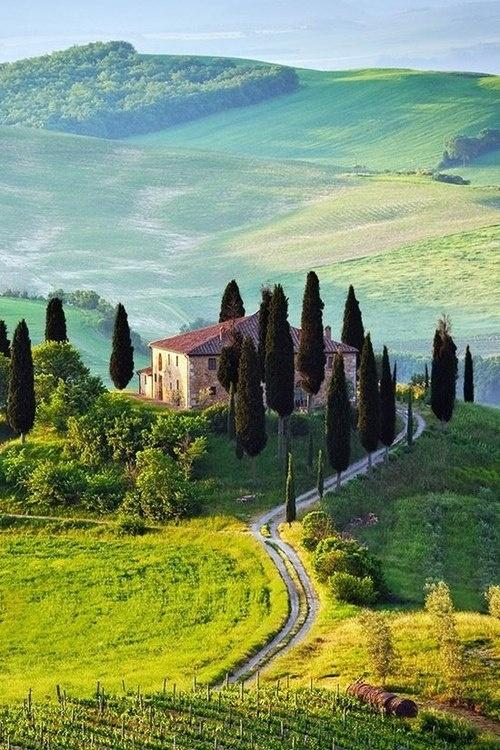 Wine tours italy
