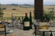 Food and wine tours in Tuscany you're going to love