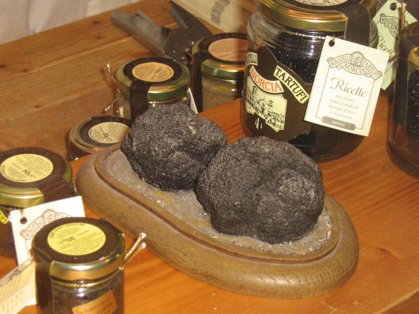 Black Truffle, Umbria,.Italy