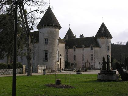 Savigny Beaune, Burgundy, france