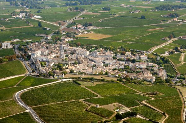 Bordeaux vineyards View resized 600