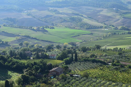 Val D'orcia Tuscany wine tour
