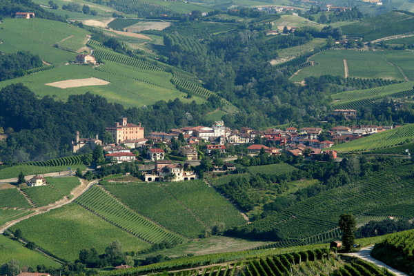 piedmont_over_view-1.jpg