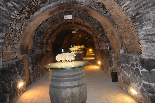 The experience of wine and food guided tours in Spain
