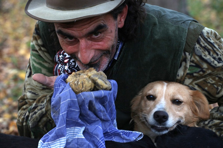 Piedmont-italy-truffle-hunting.jpg