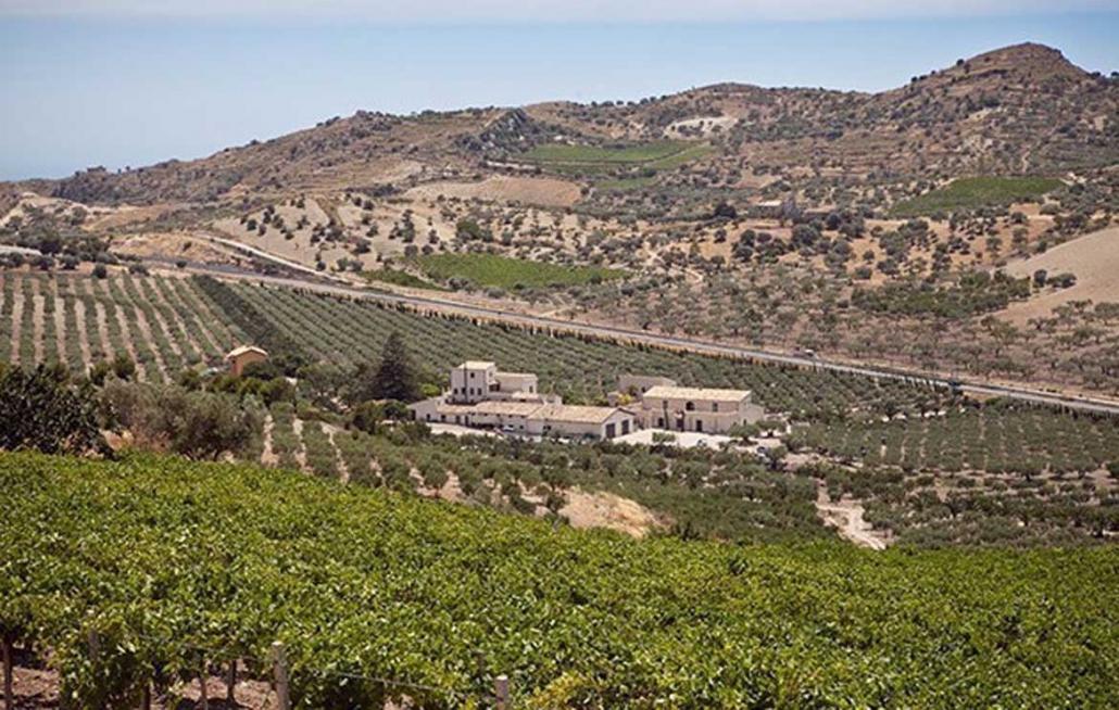 Mandranova View