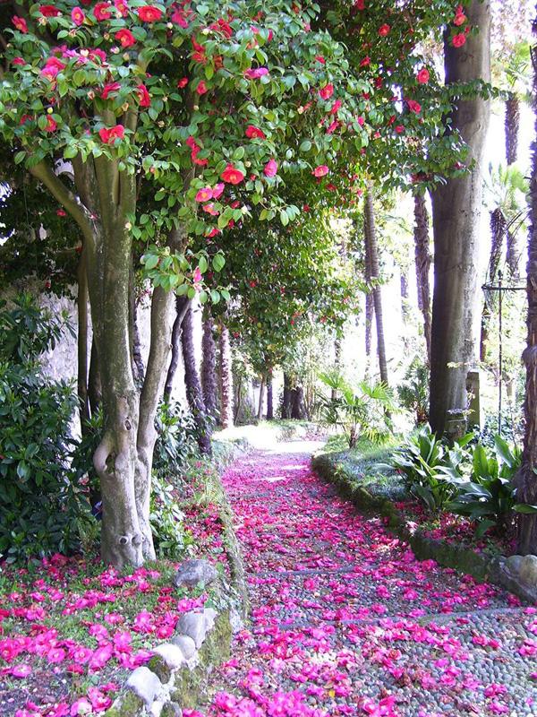 Mirabella Garden